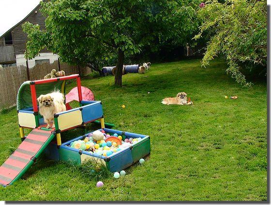 pet-playground_9